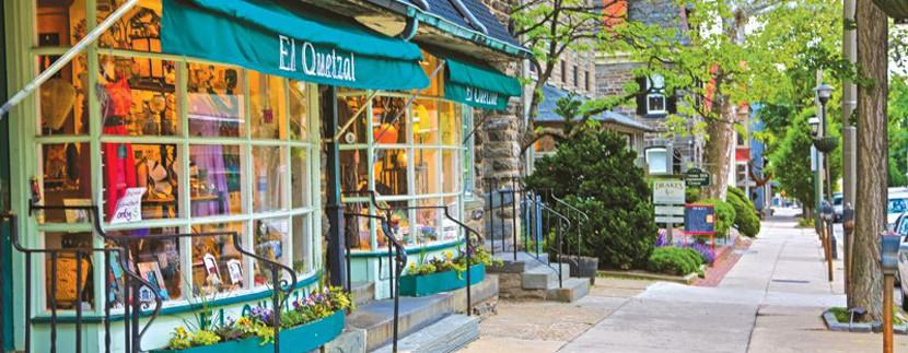 Chestnut Hill Neighborhood